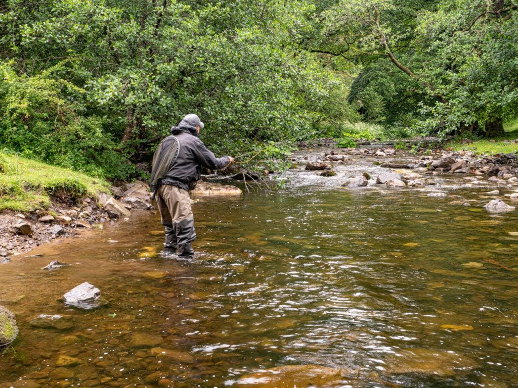 Small stream fishing Wales