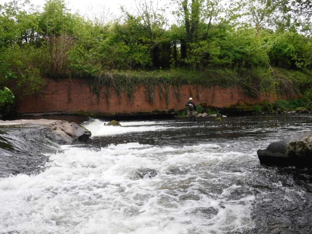 River fishing in Wales for trout