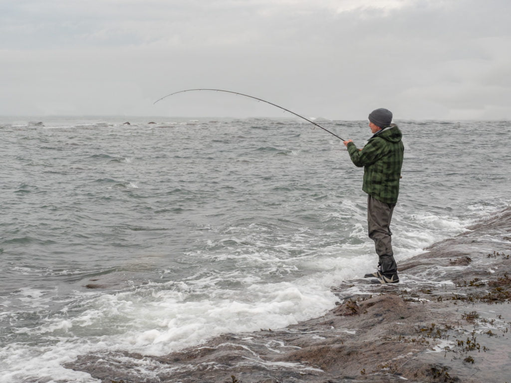 fishing for bass west wales