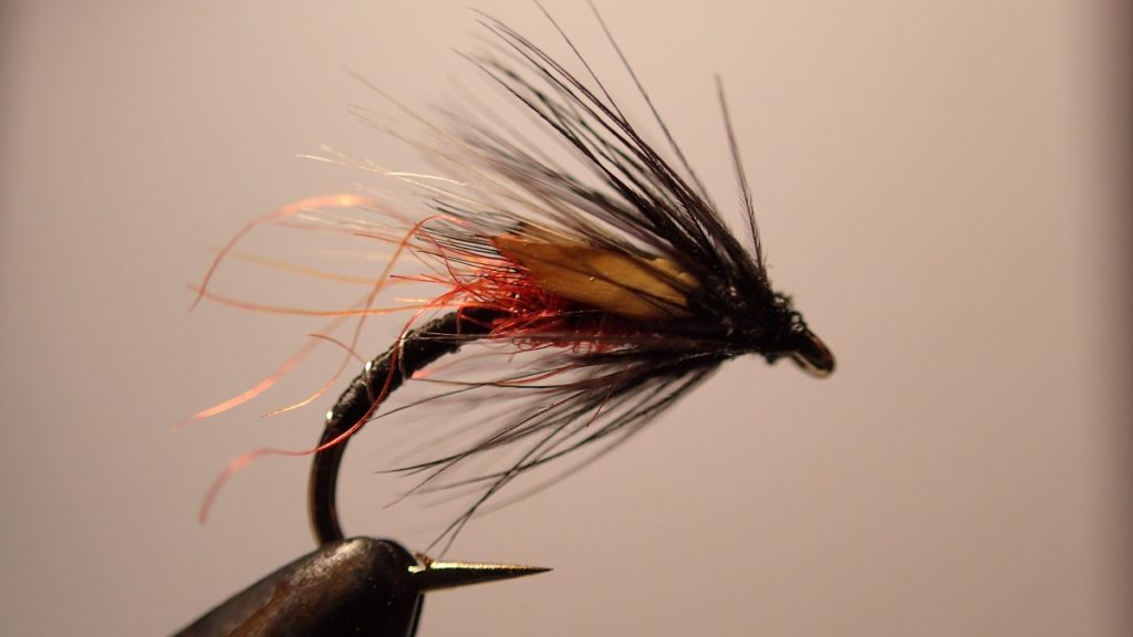 buzzer fly pattern for wild trout