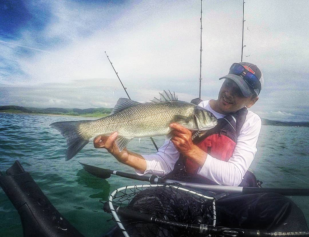 Kayak fishing for bass in Wales
