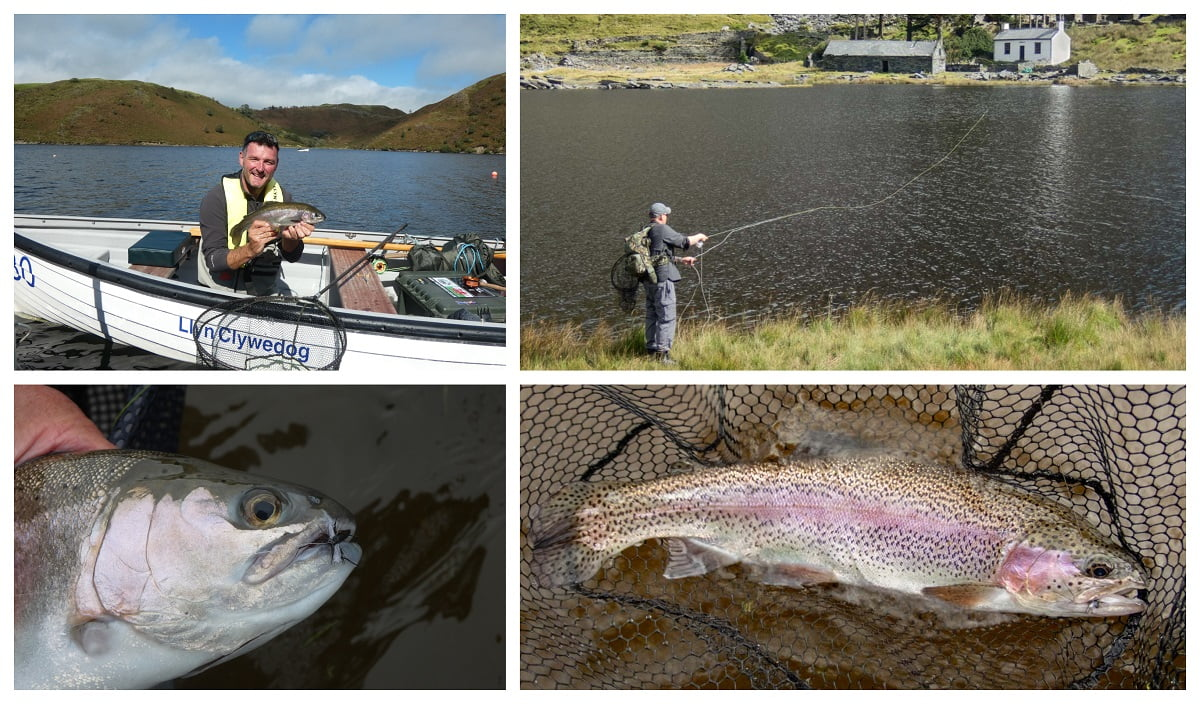 trout fishing in Wales