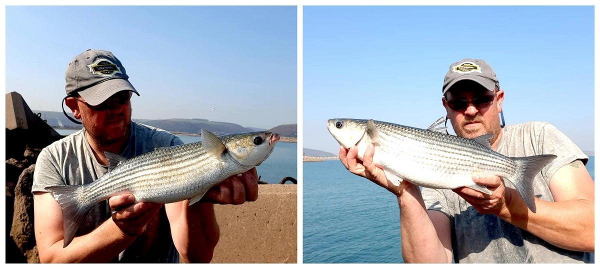 Mullet fishing Wales