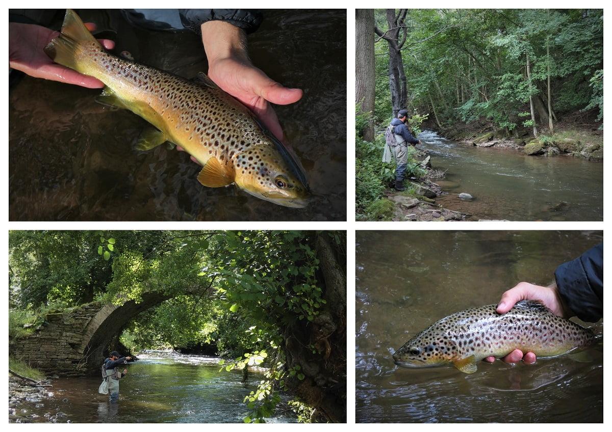 End of season trout fishing Wales
