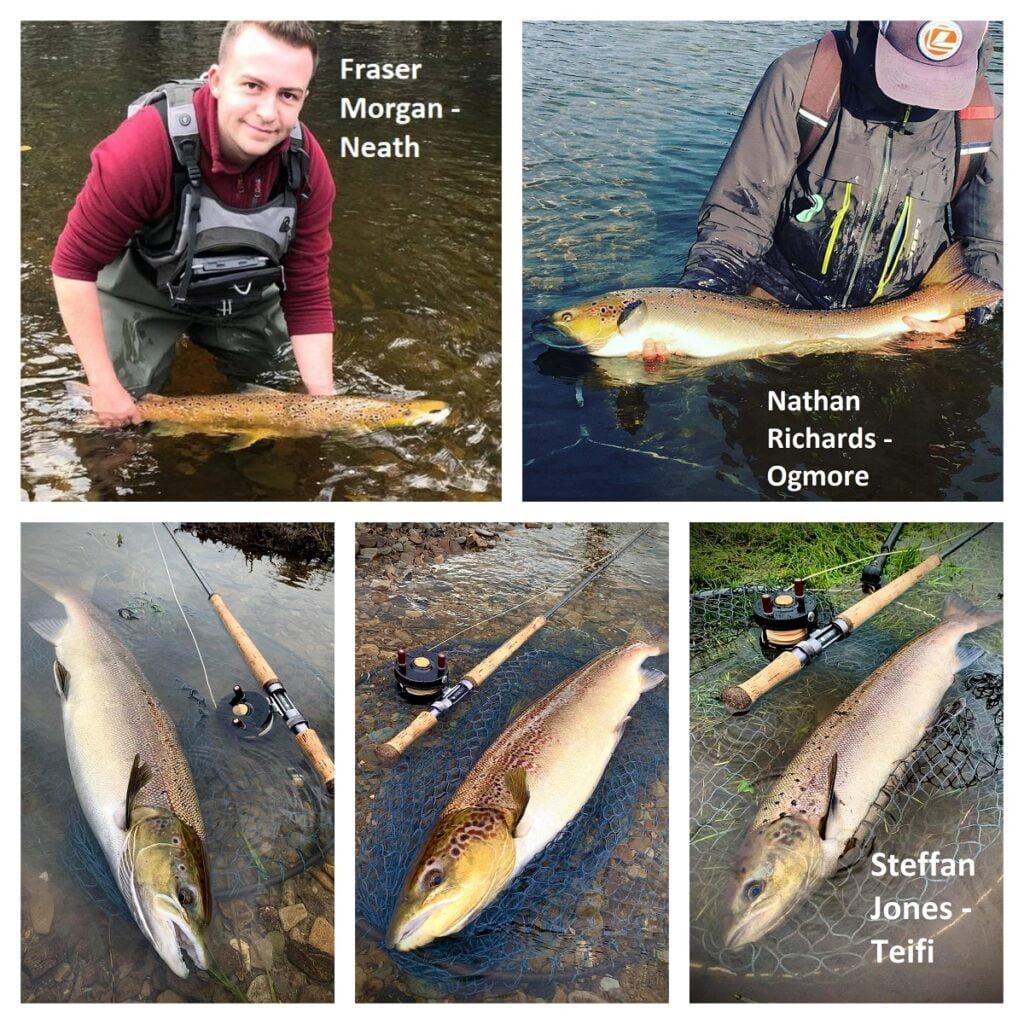 Salmon fishing in Wales