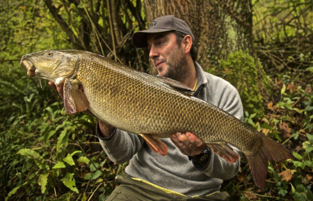 barbel fishing in Wales