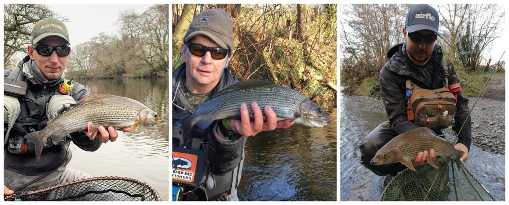fly fishing for grayling Wales