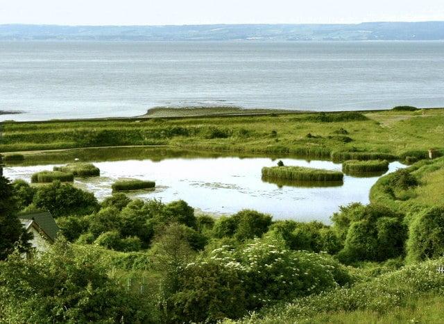 aberthaw lagoon