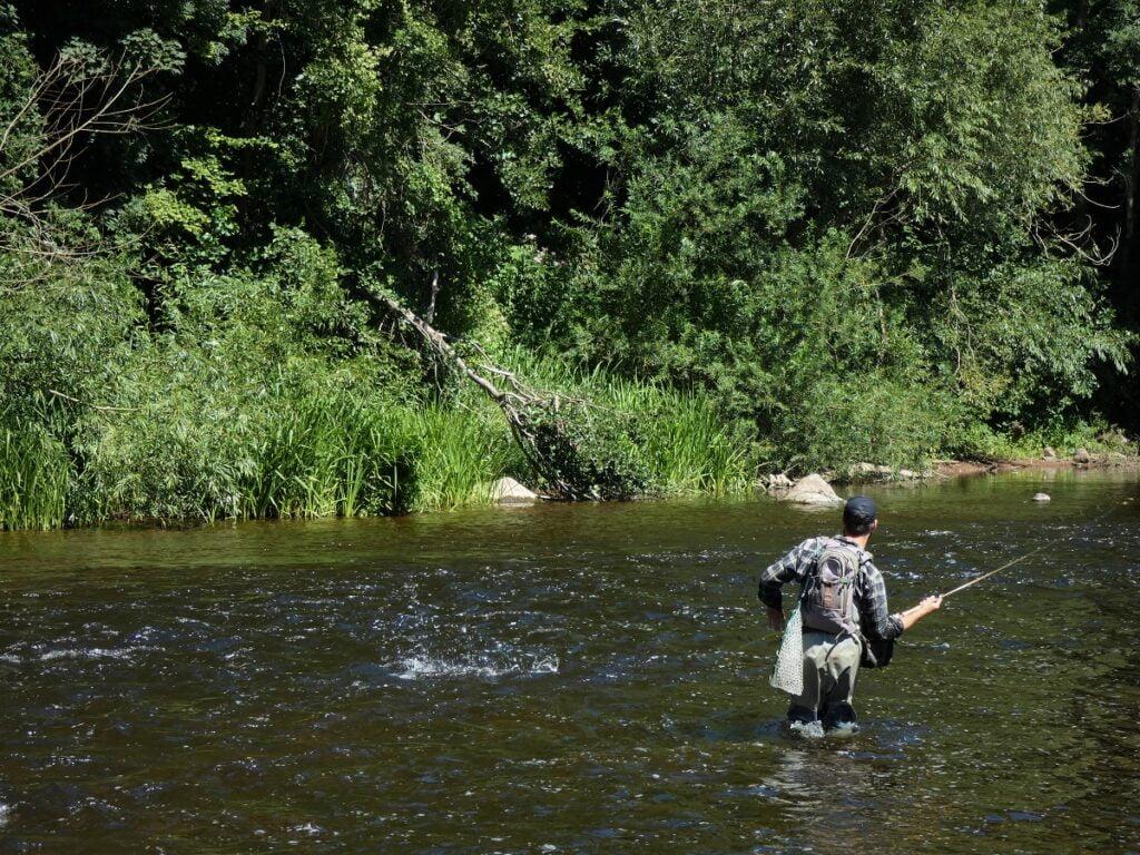 fishing river Usk