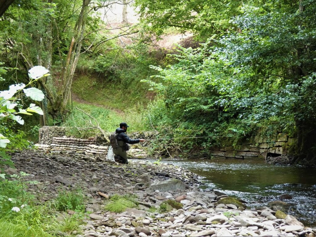 small stream fishing Wales