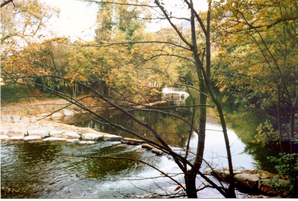 River Tawe fishing the mond